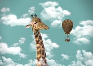 giraffe, hot air balloon, imagination